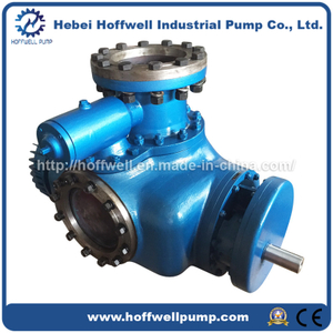 Multi-phase Heavy Oil Double Screw Pump