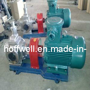 Stainless Steel Industrial Positive Displacement External Gear Pump