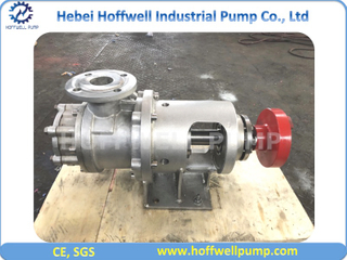 2 Inch NYP Stainless Steel Internal Gear Pump
