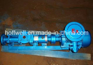 G Cast Iron Helical Rotor Single Screw Pumps