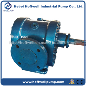 Cast Steel Thermal Oil External Gear Rotary Pump