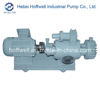 CE Approved 2W. W Twin Screw Fuel Pump