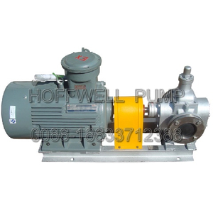 Stainless Steel Motor Drive YCB External Gear Pump