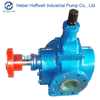 Electric External Gear Positive Displacement Pump For Oil