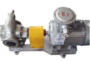 Stainless Steel Molasses Rotary External Gear Pump