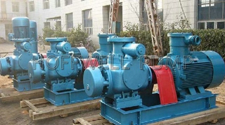 Horizontal Lubricating Oil Twin Screw Pump