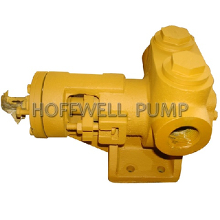 1 Inch Cast Iron NYPl Internal Gear Pump